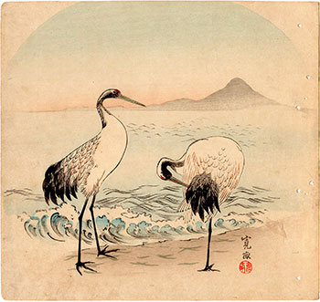COUPLE OF CRANES ON THE SEASHORE